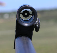 Rear Central Sight